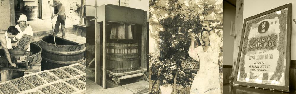 1927年から続くやまふじぶどう園の歴史